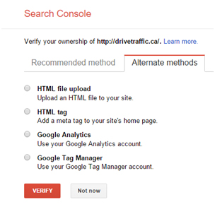 Google Search Console Verification Screenshot